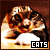 Purrfect! fanlisting for cats and kittens